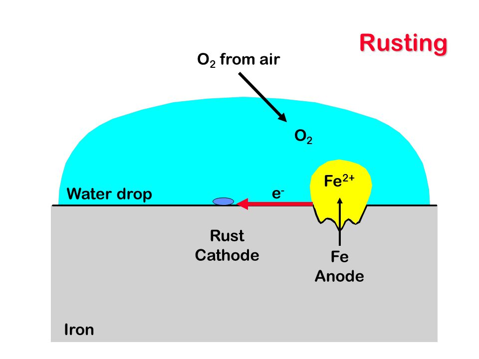 Rusting Iron Water drop Fe 2+ Fe Anode Rust Cathode e-e- O 2 from air O2O2