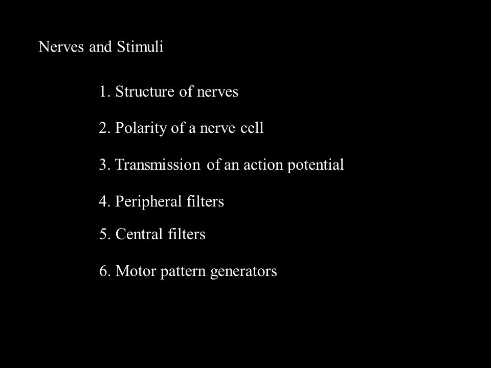 Nerves and Stimuli 1. Structure of nerves 2. Polarity of a nerve cell 3.