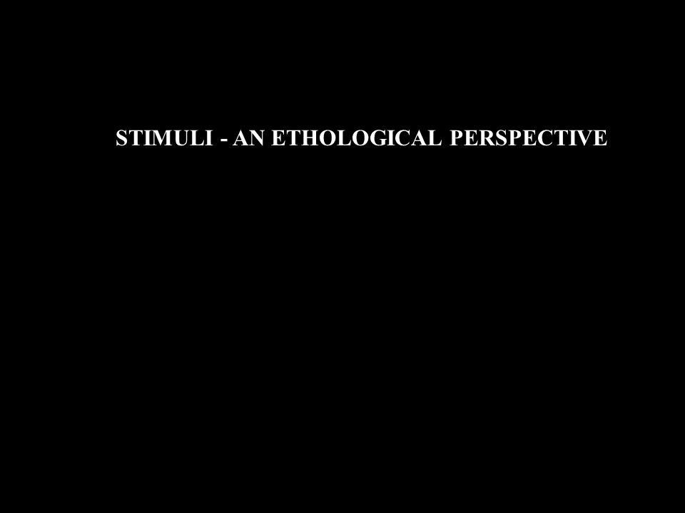 STIMULI - AN ETHOLOGICAL PERSPECTIVE