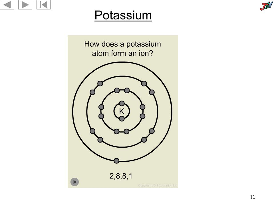 11 Potassium