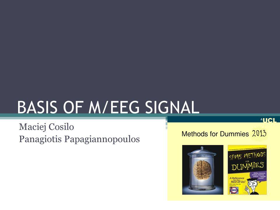 BASIS OF M/EEG SIGNAL Maciej Cosilo Panagiotis Papagiannopoulos