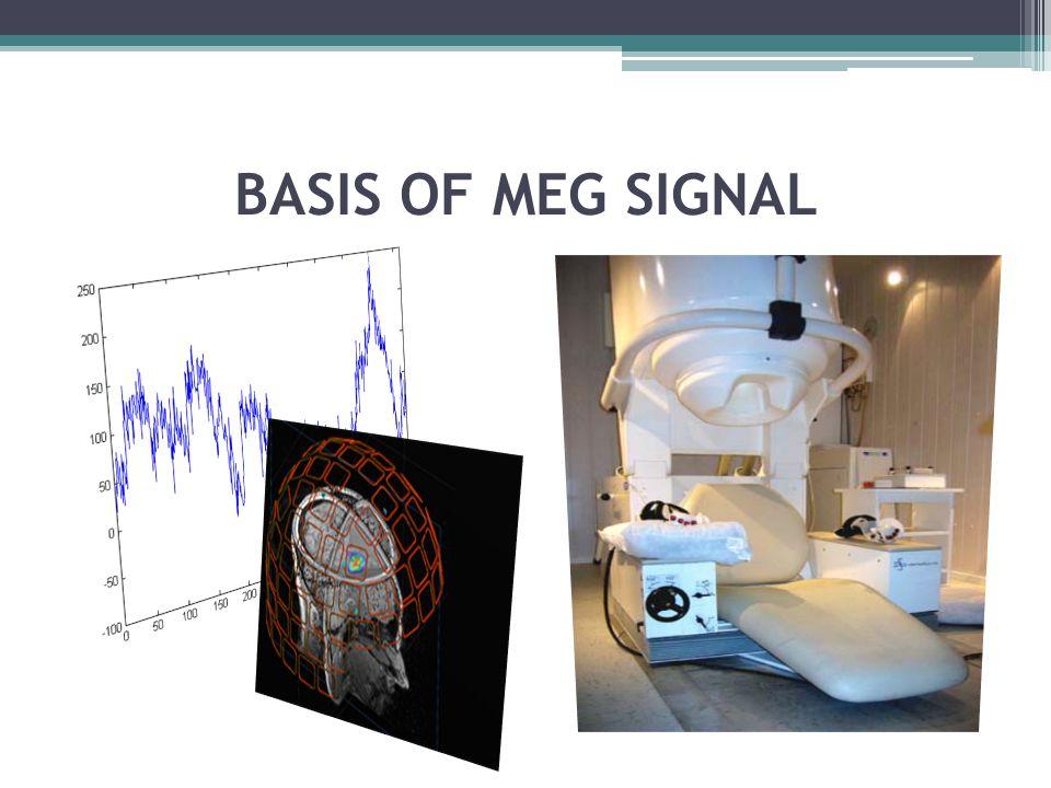 BASIS OF MEG SIGNAL