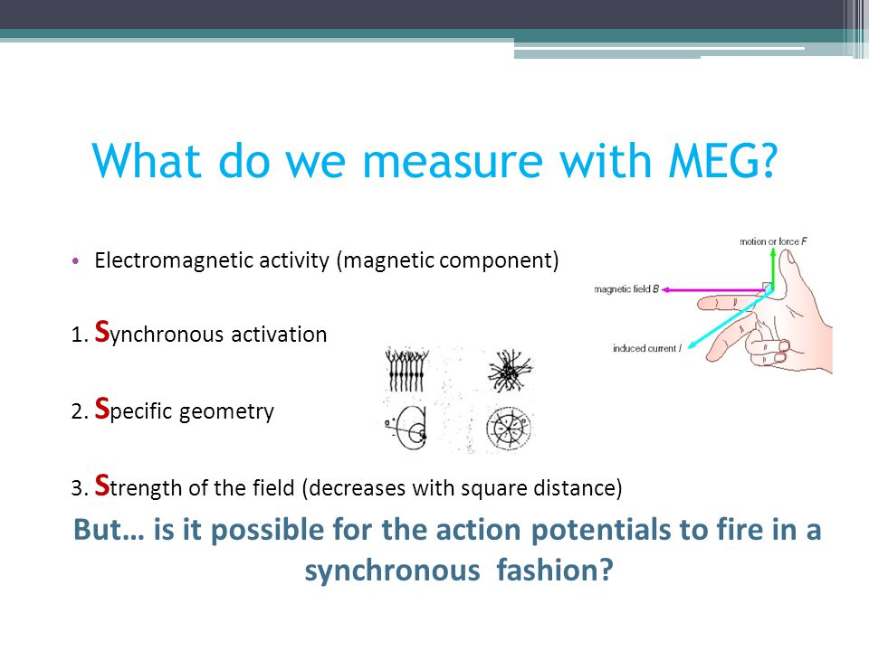 What do we measure with MEG? Electromagnetic activity (magnetic component) 1. S ynchronous activation 2. S pecific geometry 3. S trength of the field
