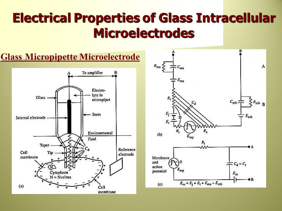 Electrical Properties of Glass Intracellular Microelectrodes Glass Micropipette Microelectrode