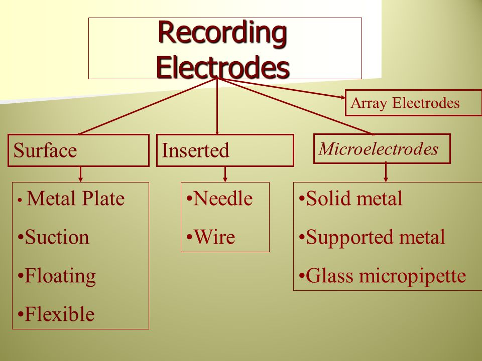 Recording Electrodes SurfaceInserted Microelectrodes Array Electrodes Metal Plate Suction Floating Flexible Needle Wire Solid metal Supported metal Gl