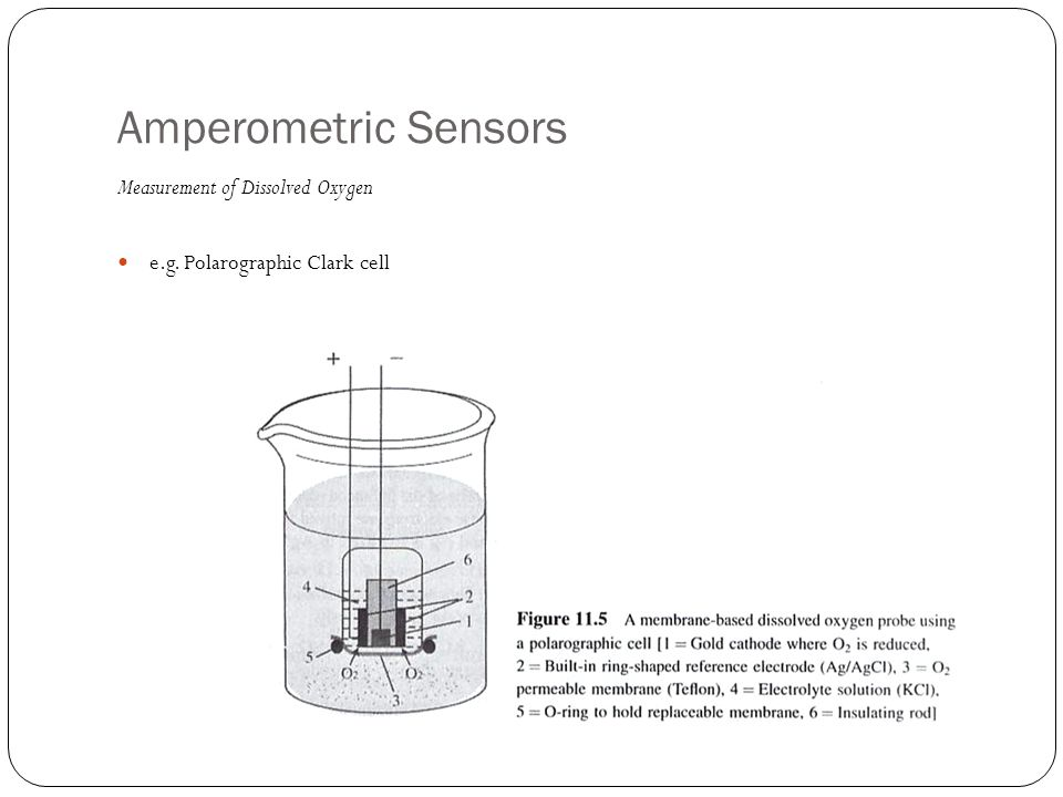 Amperometric Sensors Measurement of Dissolved Oxygen e.g. Polarographic Clark cell