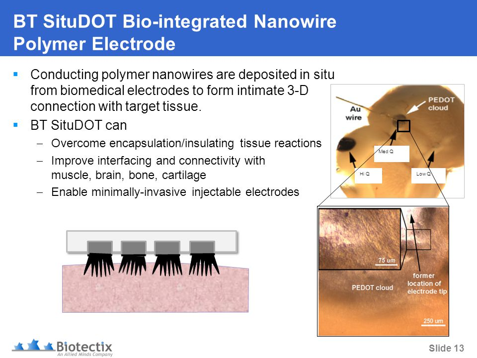 Slide 13 BT SituDOT Bio-integrated Nanowire Polymer Electrode  Conducting polymer nanowires are deposited in situ from biomedical electrodes to form intimate 3-D connection with target tissue.