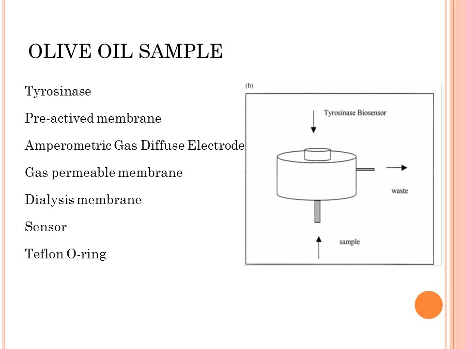 OLIVE OIL SAMPLE Tyrosinase Pre-actived membrane Amperometric Gas Diffuse Electrode Gas permeable membrane Dialysis membrane Sensor Teflon O-ring