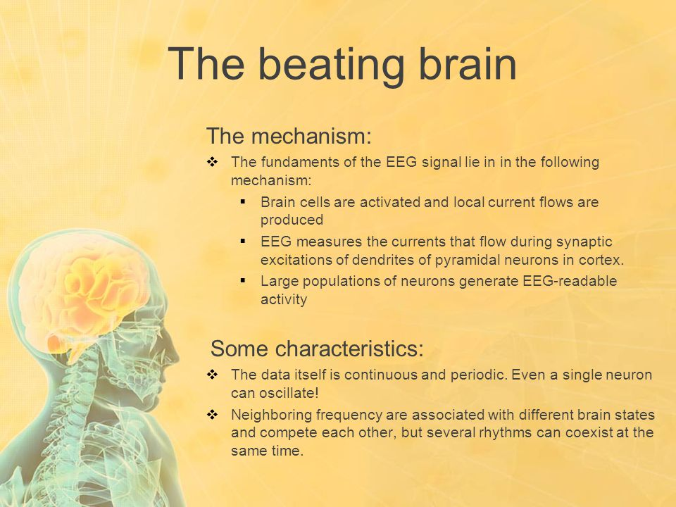 The beating brain The mechanism:  The fundaments of the EEG signal lie in in the following mechanism:  Brain cells are activated and local current f