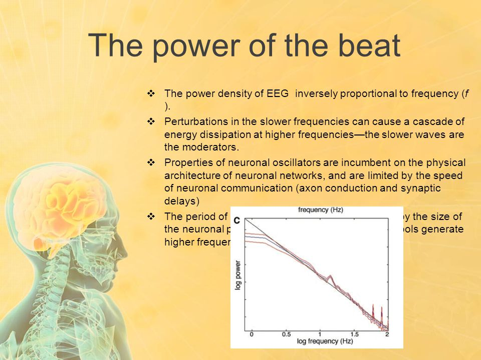 The power of the beat  The power density of EEG inversely proportional to frequency (f ).  Perturbations in the slower frequencies can cause a casca