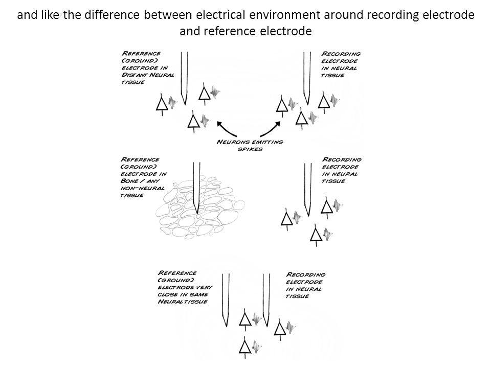 and like the difference between electrical environment around recording electrode and reference electrode