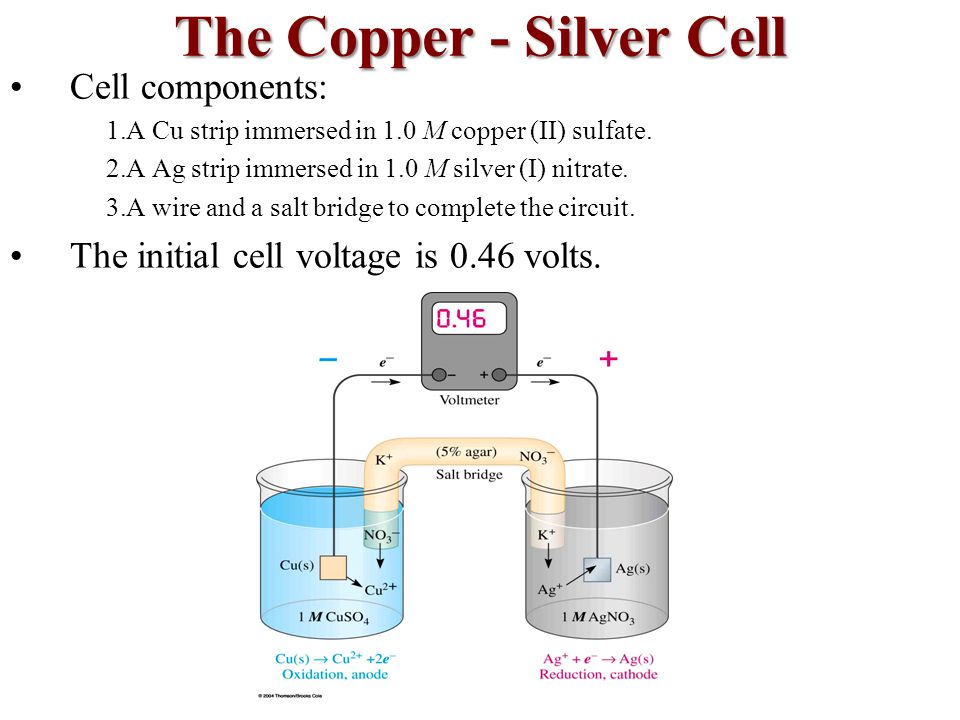 The Copper - Silver Cell Cell components: 1.A Cu strip immersed in 1.0 M copper (II) sulfate.