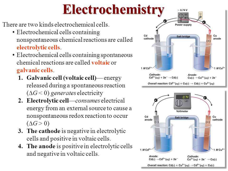 There are two kinds electrochemical cells.