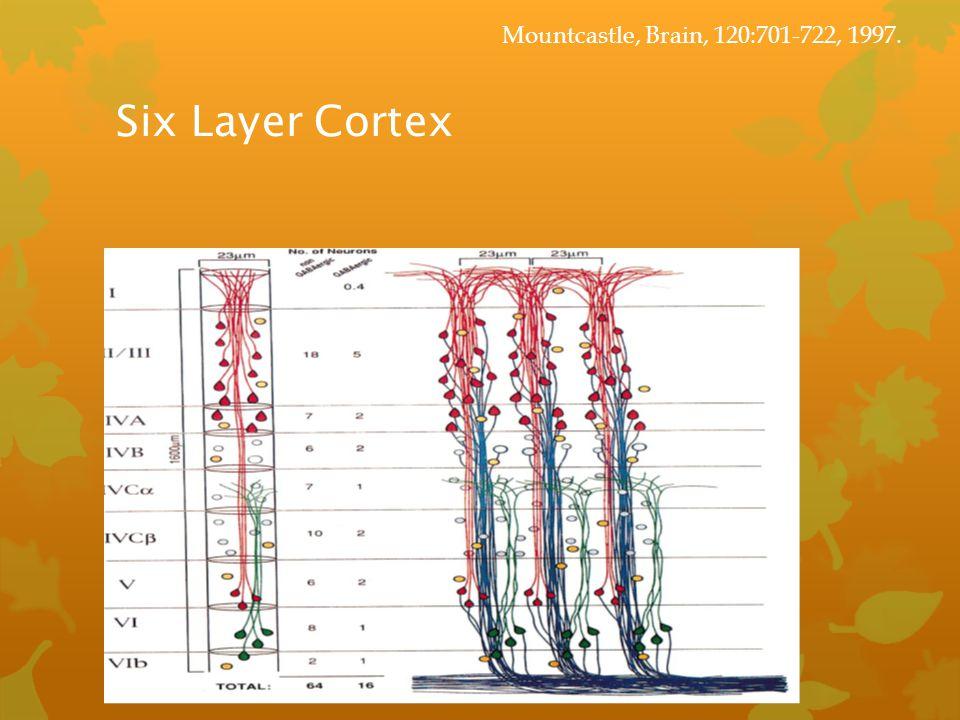 Six Layer Cortex Mountcastle, Brain, 120:701-722, 1997.