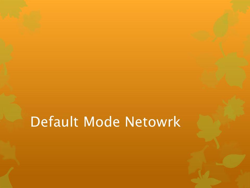 Default Mode Netowrk