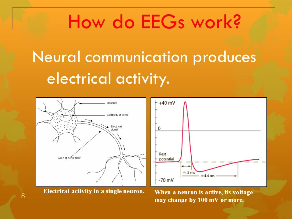 8 When a neuron is active, its voltage may change by 100 mV or more. Electrical activity in a single neuron. How do EEGs work? Neural communication pr