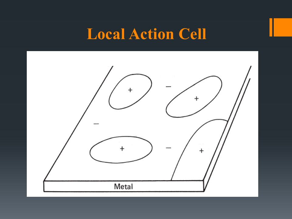 Local Action Cell