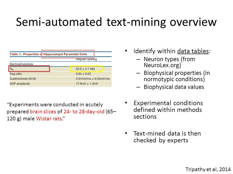 Semi-automated text-mining overview Identify within data tables: – Neuron types (from NeuroLex.org) – Biophysical properties (in normotypic conditions