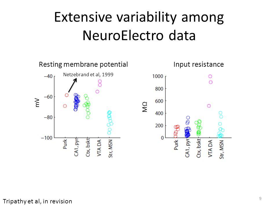Resting membrane potential mV Extensive variability among NeuroElectro data 9 Netzebrand et al, 1999 Tripathy et al, in revision Input resistance MΩ