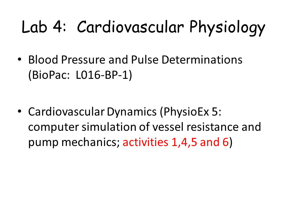 Lab 4: Cardiovascular Physiology Blood Pressure and Pulse Determinations (BioPac: L016-BP-1) Cardiovascular Dynamics (PhysioEx 5: computer simulation