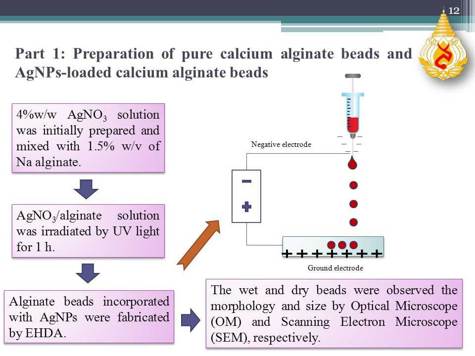 Part 1: Preparation of pure calcium alginate beads and AgNPs-loaded calcium alginate beads 4%w/w AgNO 3 solution was initially prepared and mixed with 1.5% w/v of Na alginate.