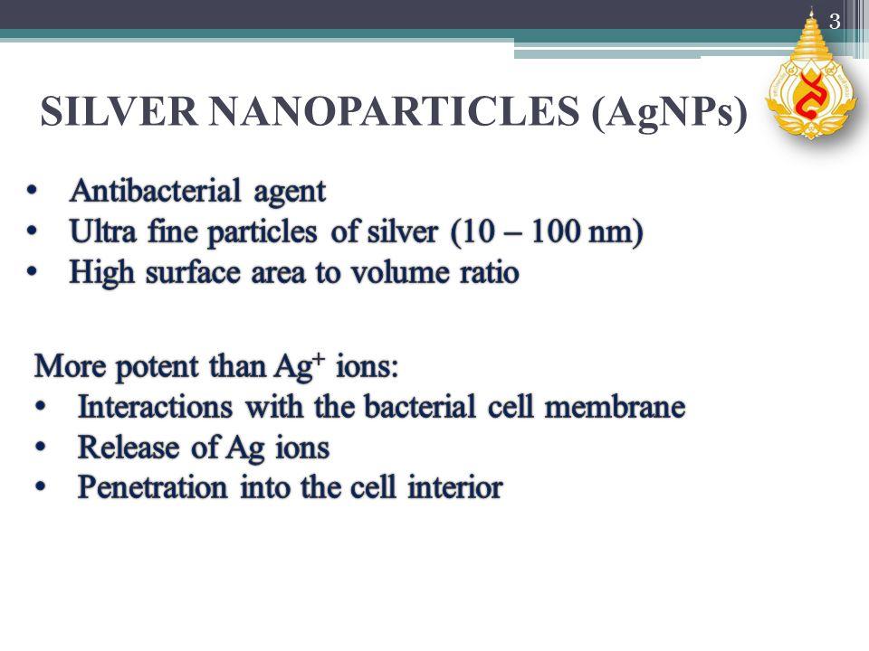 3 SILVER NANOPARTICLES (AgNPs)