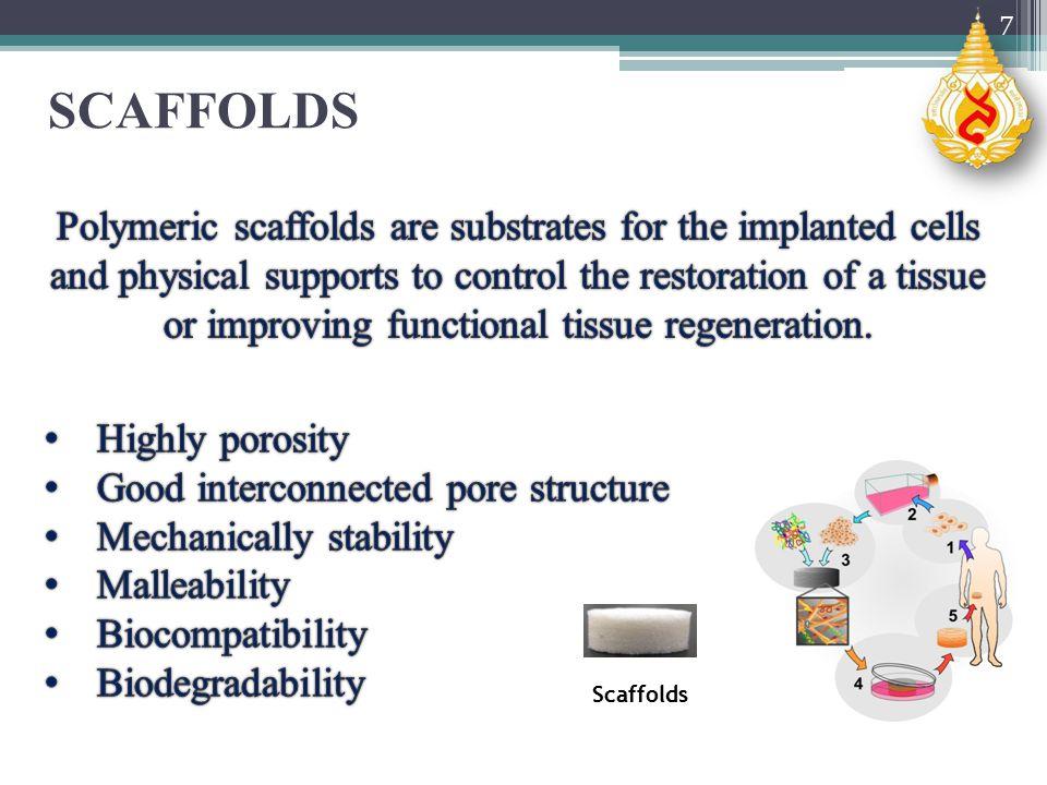 SCAFFOLDS 7 Scaffolds