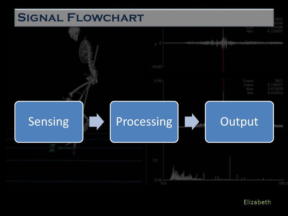 SensingProcessingOutput Elizabeth Signal Flowchart