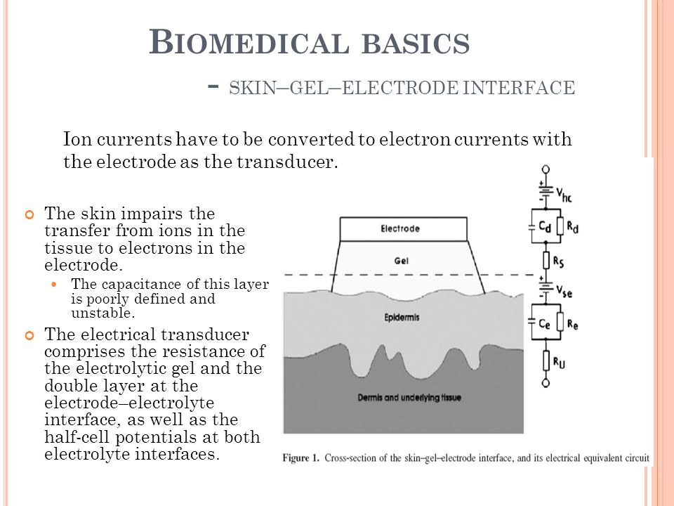 B IOMEDICAL BASICS - SKIN – GEL – ELECTRODE INTERFACE The skin impairs the transfer from ions in the tissue to electrons in the electrode. The capacit