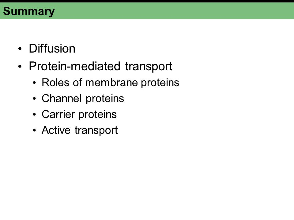Summary Diffusion Protein-mediated transport Roles of membrane proteins Channel proteins Carrier proteins Active transport