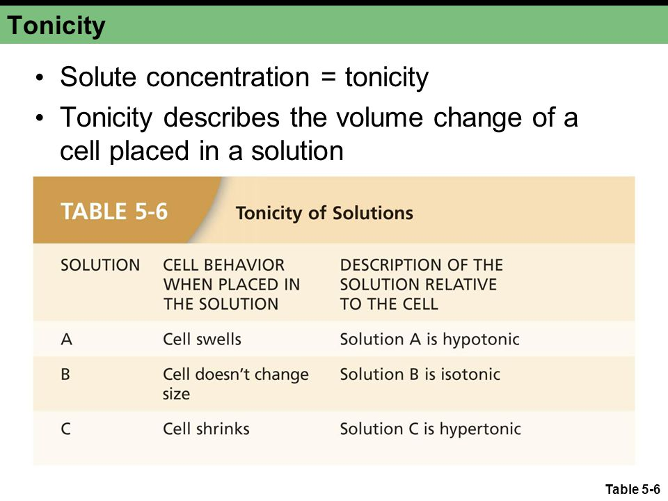 Table 5-6 Tonicity Solute concentration = tonicity Tonicity describes the volume change of a cell placed in a solution