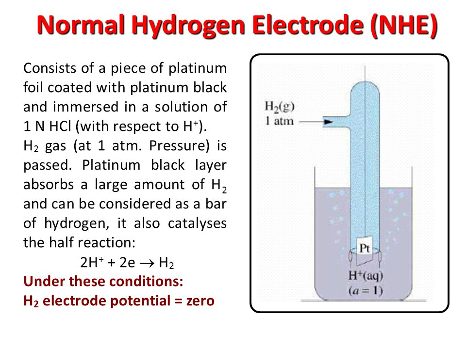 Normal Hydrogen Electrode (NHE) Consists of a piece of platinum foil coated with platinum black and immersed in a solution of 1 N HCl (with respect to