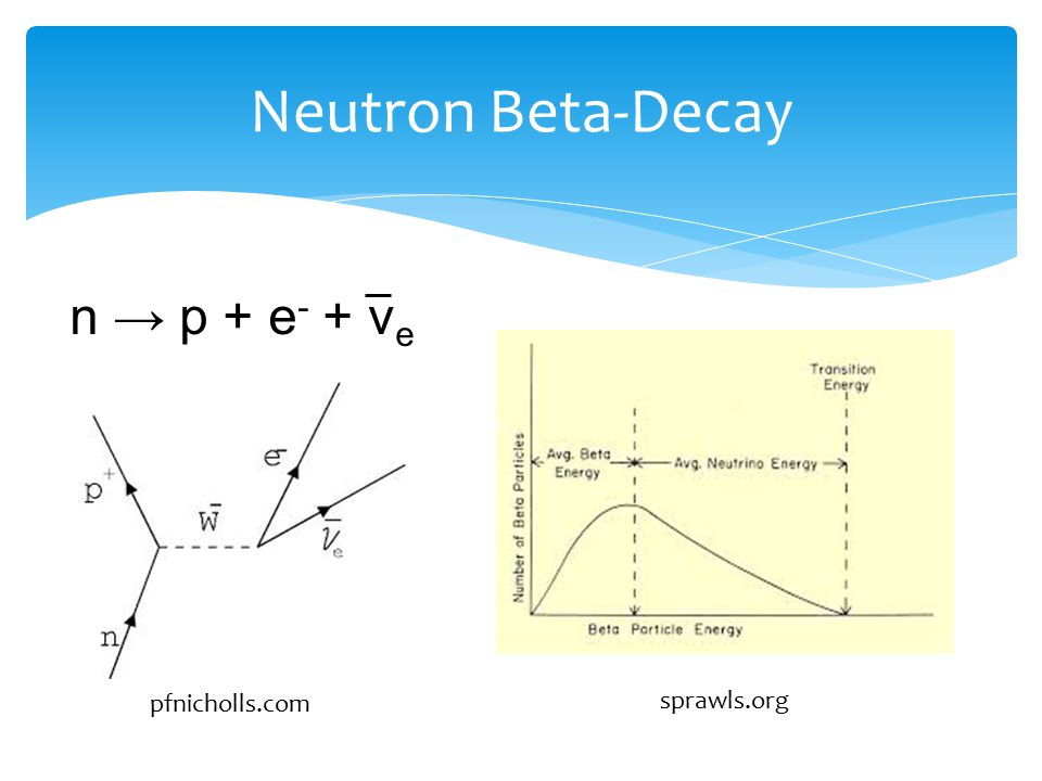 Neutron Beta-Decay n → p + e - + ν e pfnicholls.com sprawls.org