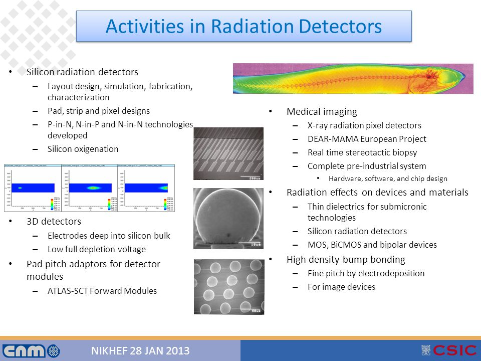 9 NIKHEF 28 JAN 2013 Silicon radiation detectors – Layout design, simulation, fabrication, characterization – Pad, strip and pixel designs – P-in-N, N-in-P and N-in-N technologies developed – Silicon oxigenation 3D detectors – Electrodes deep into silicon bulk – Low full depletion voltage Pad pitch adaptors for detector modules – ATLAS-SCT Forward Modules Medical imaging – X-ray radiation pixel detectors – DEAR-MAMA European Project – Real time stereotactic biopsy – Complete pre-industrial system Hardware, software, and chip design Radiation effects on devices and materials – Thin dielectrics for submicronic technologies – Silicon radiation detectors – MOS, BiCMOS and bipolar devices High density bump bonding – Fine pitch by electrodeposition – For image devices Activities in Radiation Detectors