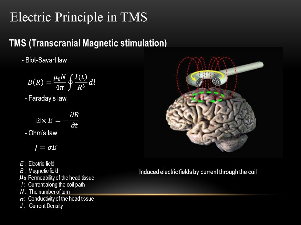 TMS (Transcranial Magnetic stimulation) Electric Principle in TMS - Faraday's law - Biot-Savart law Induced electric fields by current through the coil - Ohm's law E : Electric field B : Magnetic field : Permeability of the head tissue I : Current along the coil path N : The number of turn : Conductivity of the head tissue J : Current Density