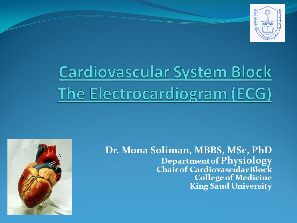 Dr. Mona Soliman, MBBS, MSc, PhD Department of Physiology Chair of Cardiovascular Block College of Medicine King Saud University