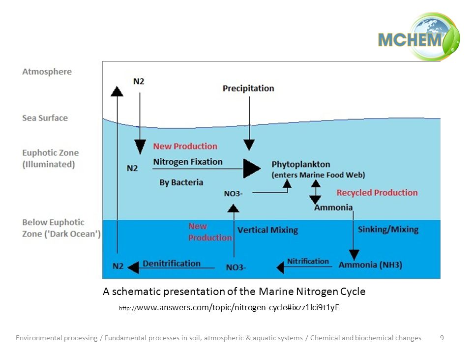 A schematic presentation of the Marine Nitrogen Cycle Environmental processing / Fundamental processes in soil, atmospheric & aquatic systems / Chemical and biochemical changes9 http:// www.answers.com/topic/nitrogen-cycle#ixzz1lci9t1yE