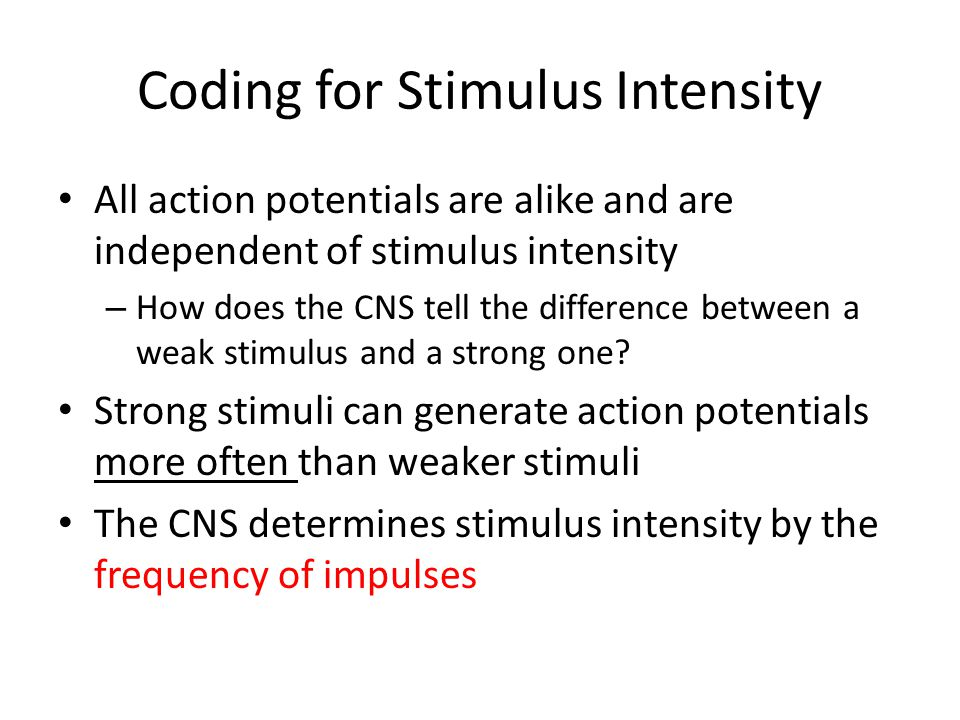 Coding for Stimulus Intensity All action potentials are alike and are independent of stimulus intensity – How does the CNS tell the difference between