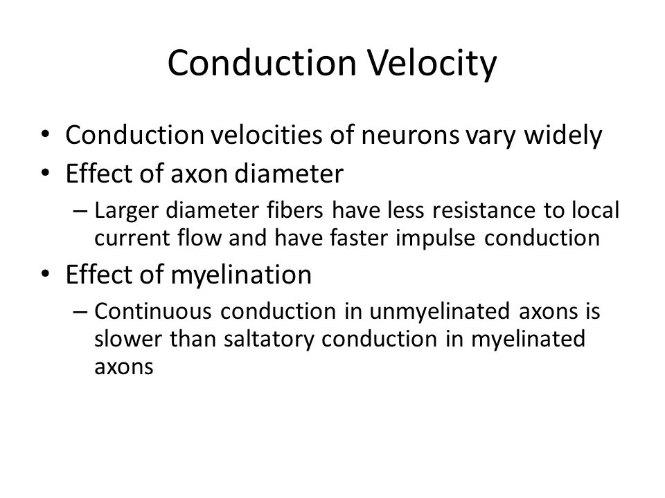 Conduction Velocity Conduction velocities of neurons vary widely Effect of axon diameter – Larger diameter fibers have less resistance to local curren