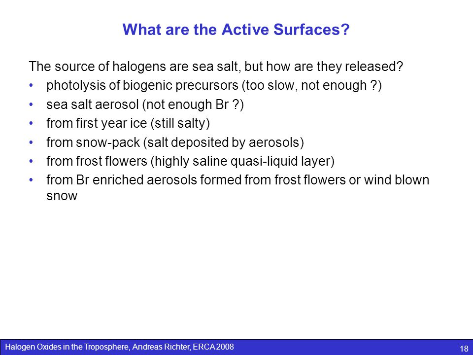 Halogen Oxides in the Troposphere, Andreas Richter, ERCA 2008 18 What are the Active Surfaces.