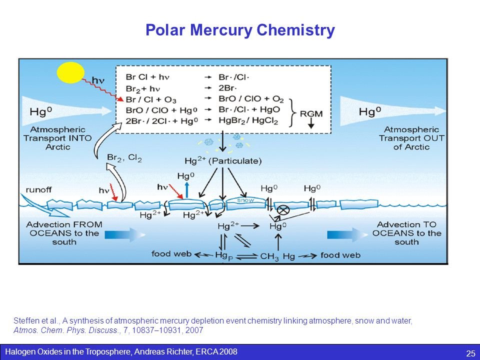Halogen Oxides in the Troposphere, Andreas Richter, ERCA 2008 25 Polar Mercury Chemistry Steffen et al., A synthesis of atmospheric mercury depletion event chemistry linking atmosphere, snow and water, Atmos.