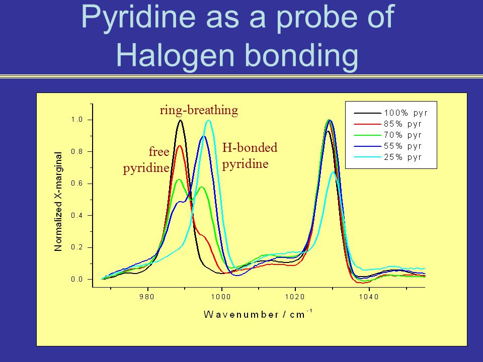 free pyridine H-bonded pyridine ring-breathing