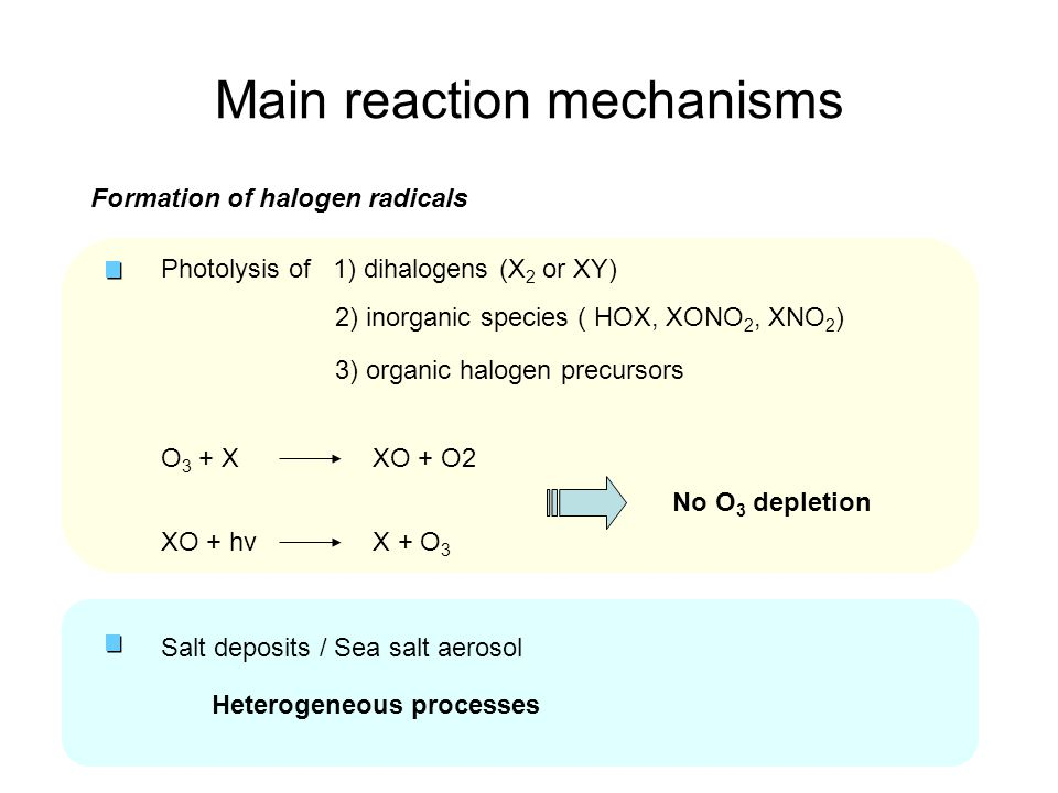 Main reaction mechanisms Formation of halogen radicals O 3 + X Salt deposits / Sea salt aerosol XO + hvX + O 3 Photolysis of 1) dihalogens (X 2 or XY) 2) inorganic species ( HOX, XONO 2, XNO 2 ) 3) organic halogen precursors XO + O2 Heterogeneous processes No O 3 depletion