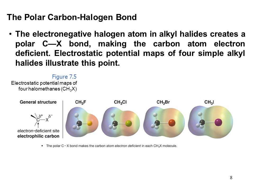 8 The electronegative halogen atom in alkyl halides creates a polar C—X bond, making the carbon atom electron deficient. Electrostatic potential maps