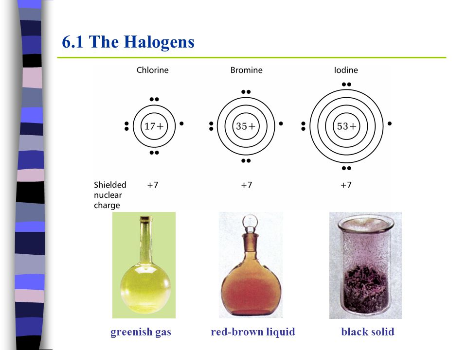 6.1 The Halogens Covalent radius/nm T m /KT b /K Cl0.099172238 Br0.114266332 I0.133387457 The melting and boiling temperatures increase as going down the group, because larger atoms makes the van der Waals forces between the molecules stronger.