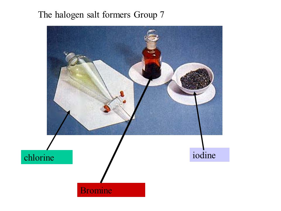 chlorine iodine Bromine The halogen salt formers Group 7
