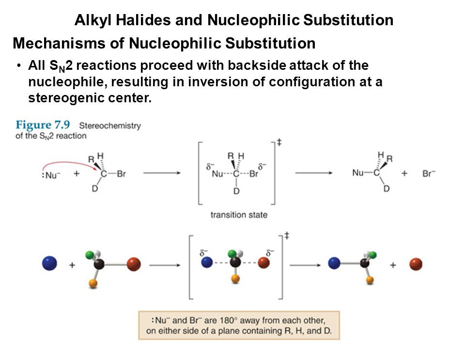 Alkyl Halides and Nucleophilic Substitution All S N 2 reactions proceed with backside attack of the nucleophile, resulting in inversion of configurati