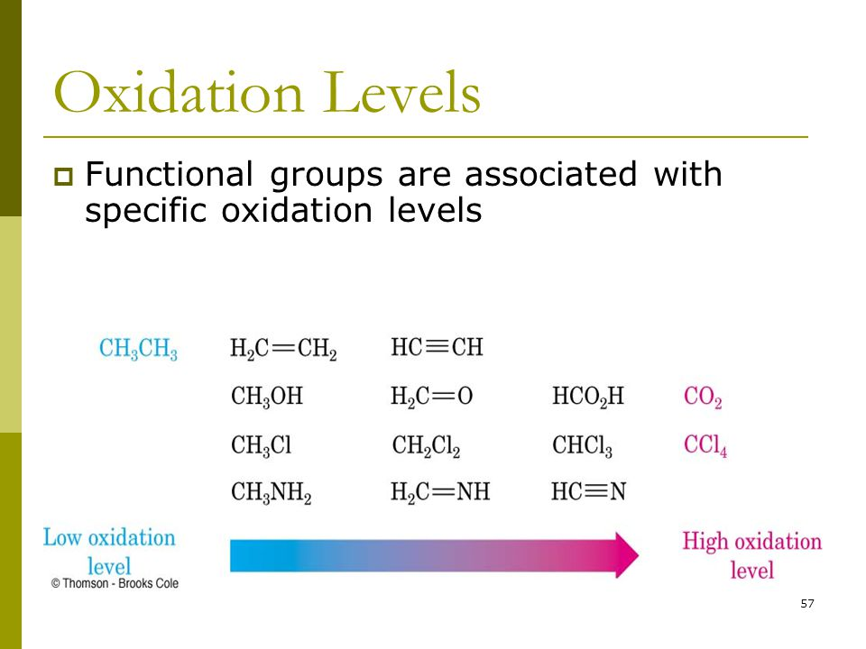 57 Oxidation Levels  Functional groups are associated with specific oxidation levels