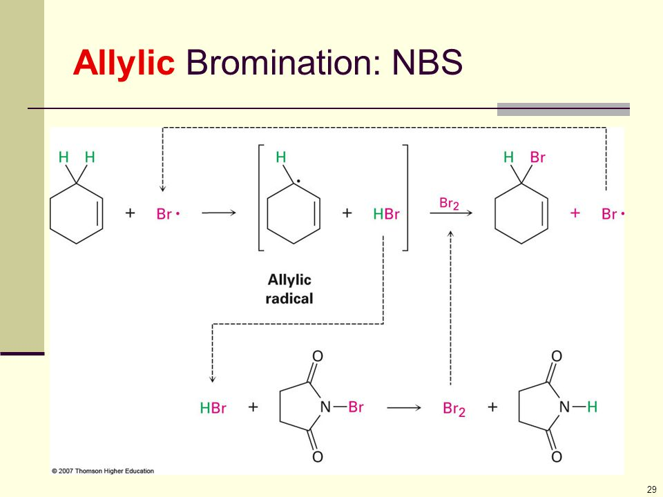 29 Allylic Bromination: NBS