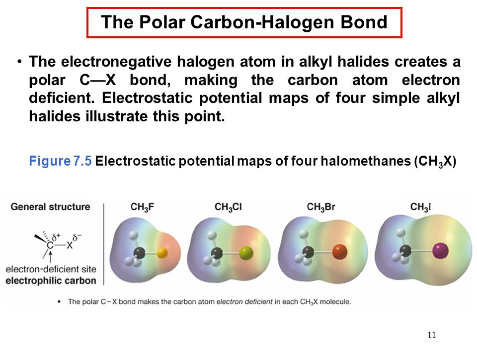 11 The electronegative halogen atom in alkyl halides creates a polar C—X bond, making the carbon atom electron deficient. Electrostatic potential maps